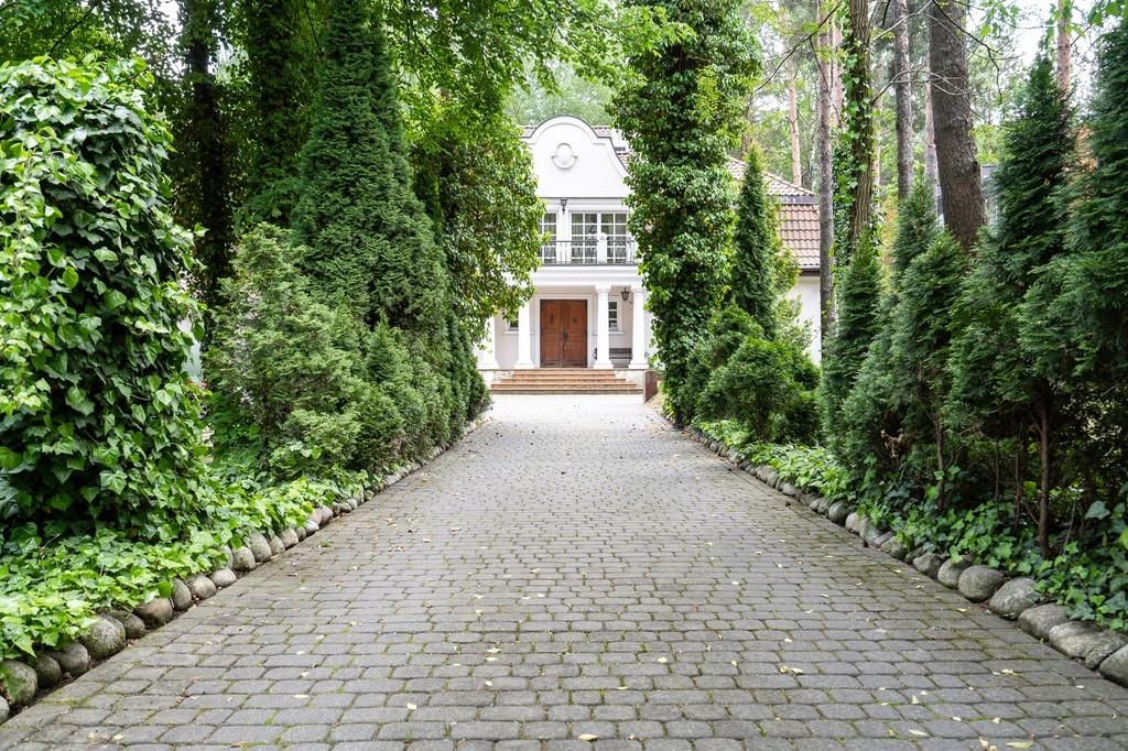 Dąbrowa Leśna - Dom do wynajęcia #21